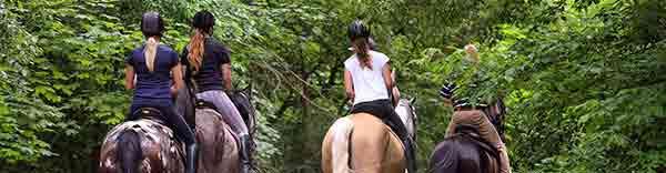 Hacer rutas de caballo en Cataluña